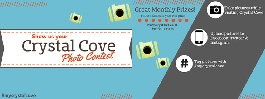 Photo Contest | Crystal Cove Beach Resort